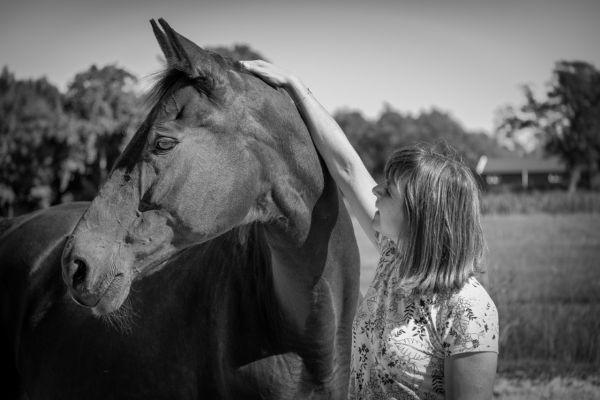 paarden-5-aangepast1EF56725-8F58-D055-41CA-40100A18D491.jpg