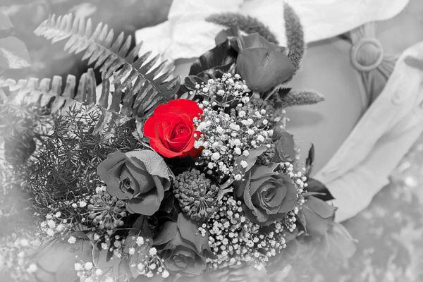wedding-30CEDC26B-C187-82F3-F0F9-EA33AD26F7F5.jpg